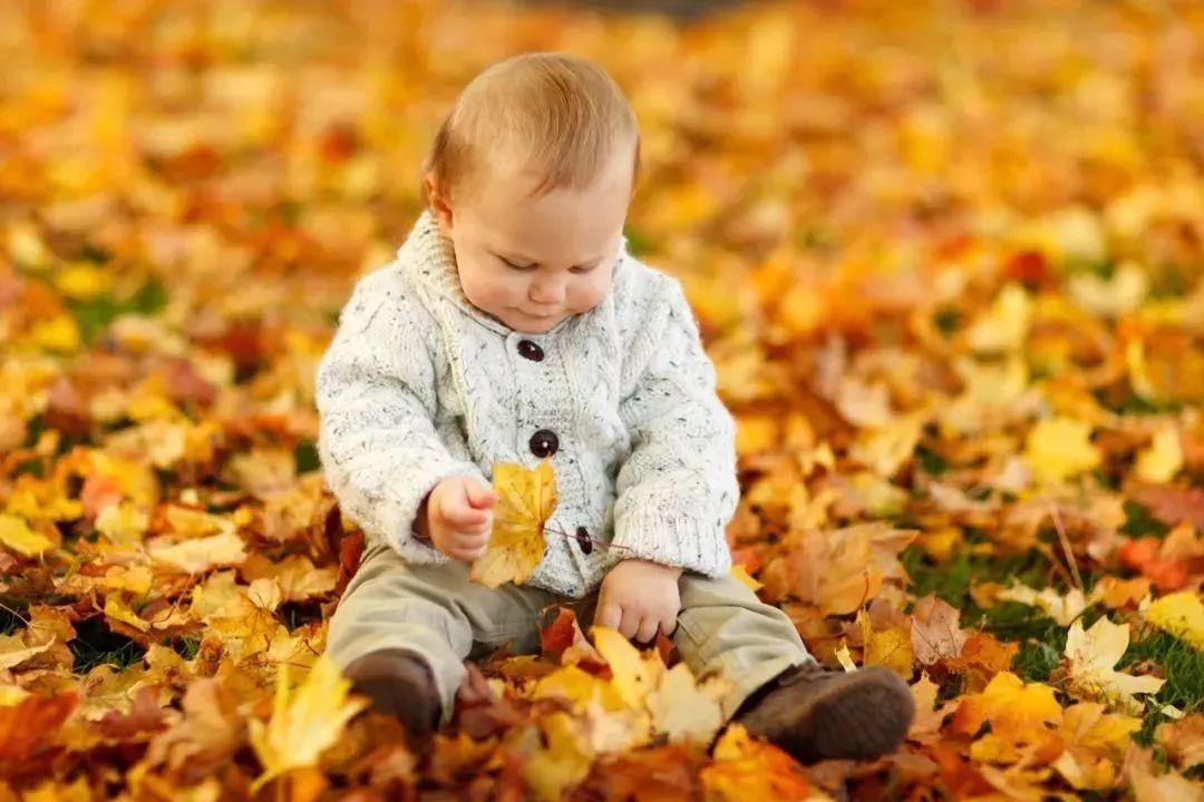 宝宝为什么喜欢打对他最好的亲人?真相让人很意外