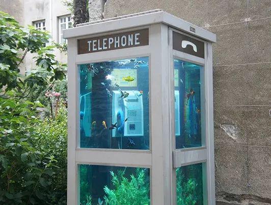 里面的电话机看来是报废了