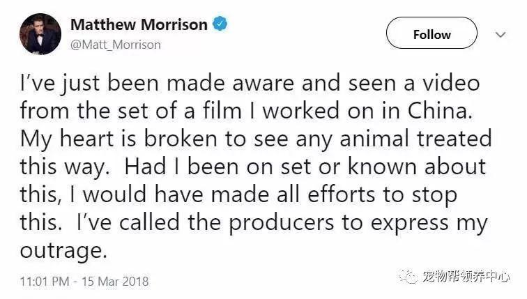 电影《疯狂外星人》上映在即,还记得那些被伤害的动物吗?