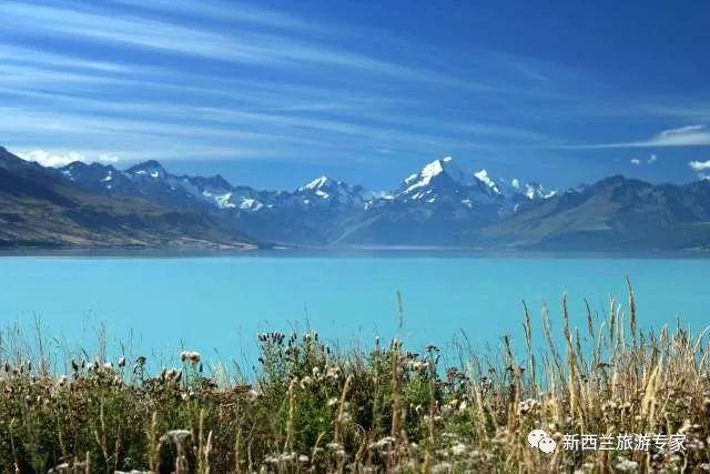 此生从未想到,天地间竟有一种颜色,美得让人窒息!那就是新西—蓝!