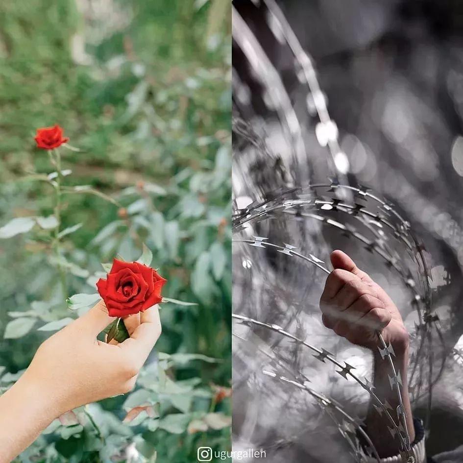 刺痛无数人的网红照片:有些人的愿望, 只是活着长大