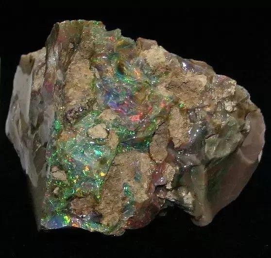 中国大叔来澳旅行,捡了块石头带回国!专家鉴定:价值一栋房子!
