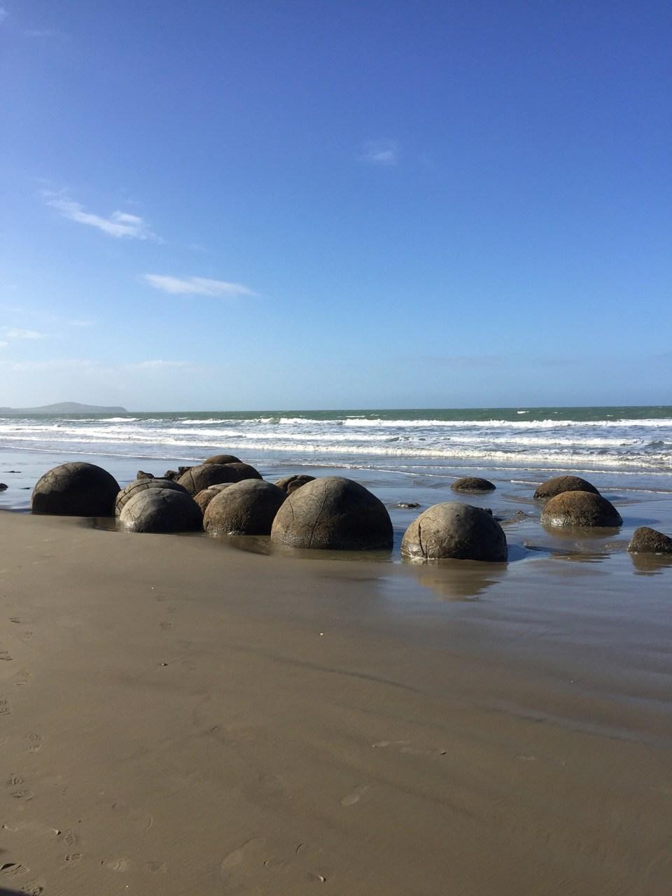 【游记】南岛第二大城Dunedin|但尼丁|Moeraki Boulders