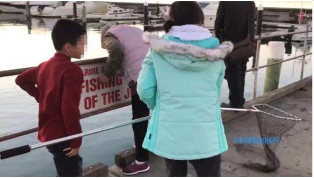 华人家庭在澳非法捕蟹 同胞怒斥:丢中国人的脸