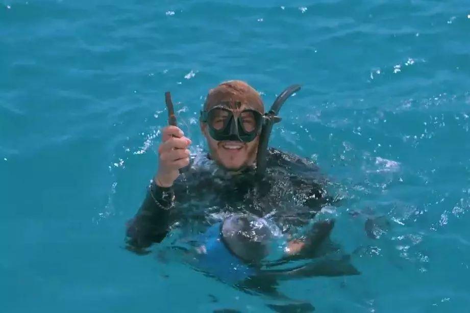 """""""帮帮我!我被鱼钩卡住了!""""受伤魔鬼鱼主动向潜水员求助获救!"""