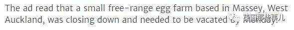 他不小心花1.5刀买回1000只母鸡!简直全程令人捉鸡!