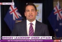 最近的民意调查对于国家党党魁西蒙·布里奇斯(Simon Bridges)来说是灾难性的。