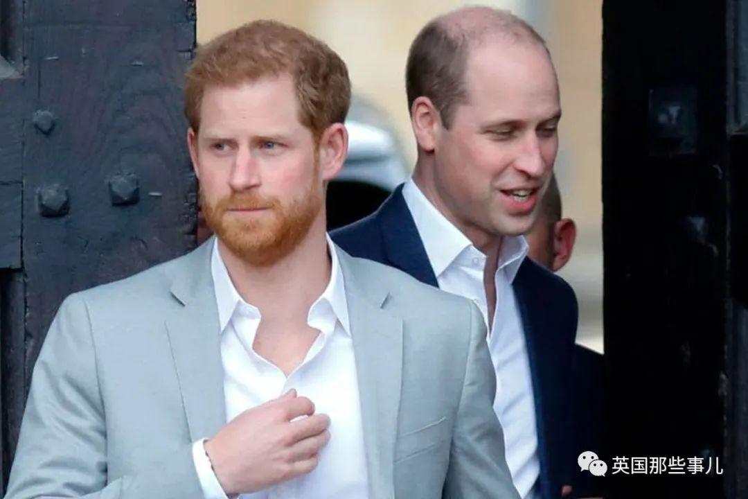 哈里:才不是被梅根影响的梅脱,退出王室是我自己要的!