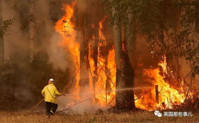消防员野外救野火,没想到回家后,自己一家人烧没了...